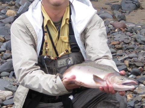 知床の川で鮭を釣ってみたい人のための手引き