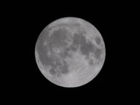 今月今夜のこの月を [Super Full Moon]