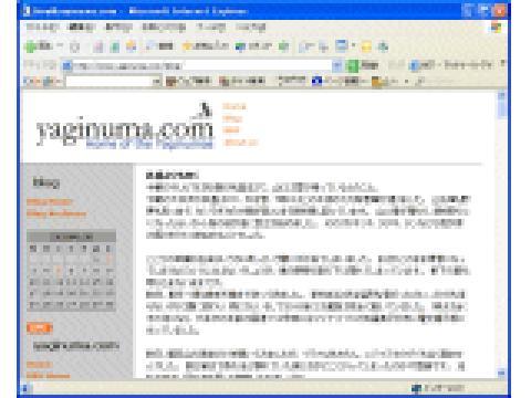 yaginuma.com